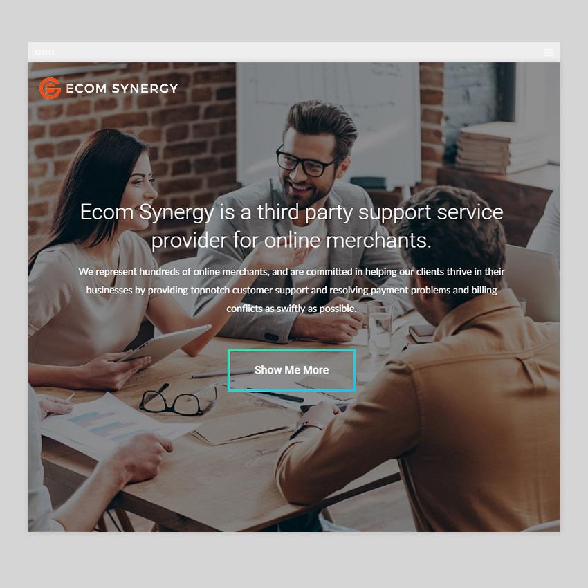 ecomsynergy site - Разработка сайтов на Wordpress