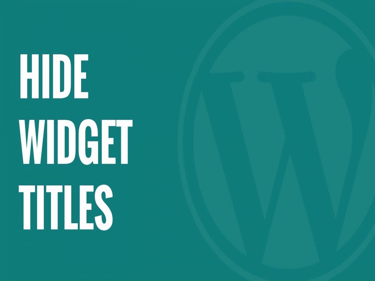 hide widget titles