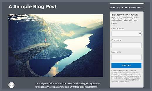 defaultsignupform - Как подсоединить Constant Contact к Wordpress: пошаговое руководство