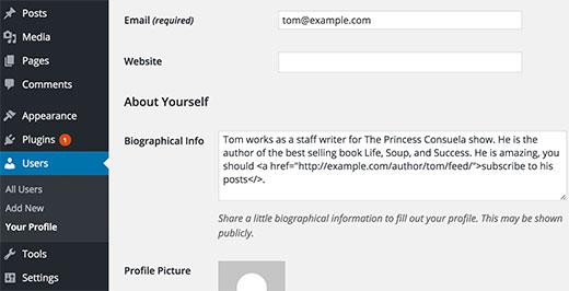 bioinfowithfeedlinks - Как дать пользователям подписываться на авторов в Wordpress?