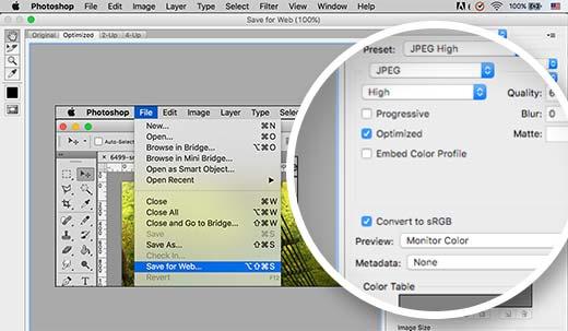 optimizedforweb - Как избежать потери цвета и насыщенности изображений в Wordpress