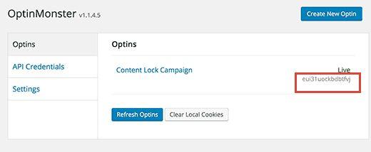 optinslug - Как спрятать под замок контент сайта