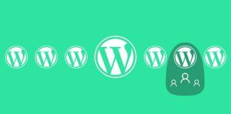 Как отображать дату регистрации в WordPress